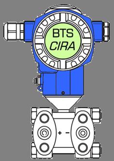 logo CIRA.png